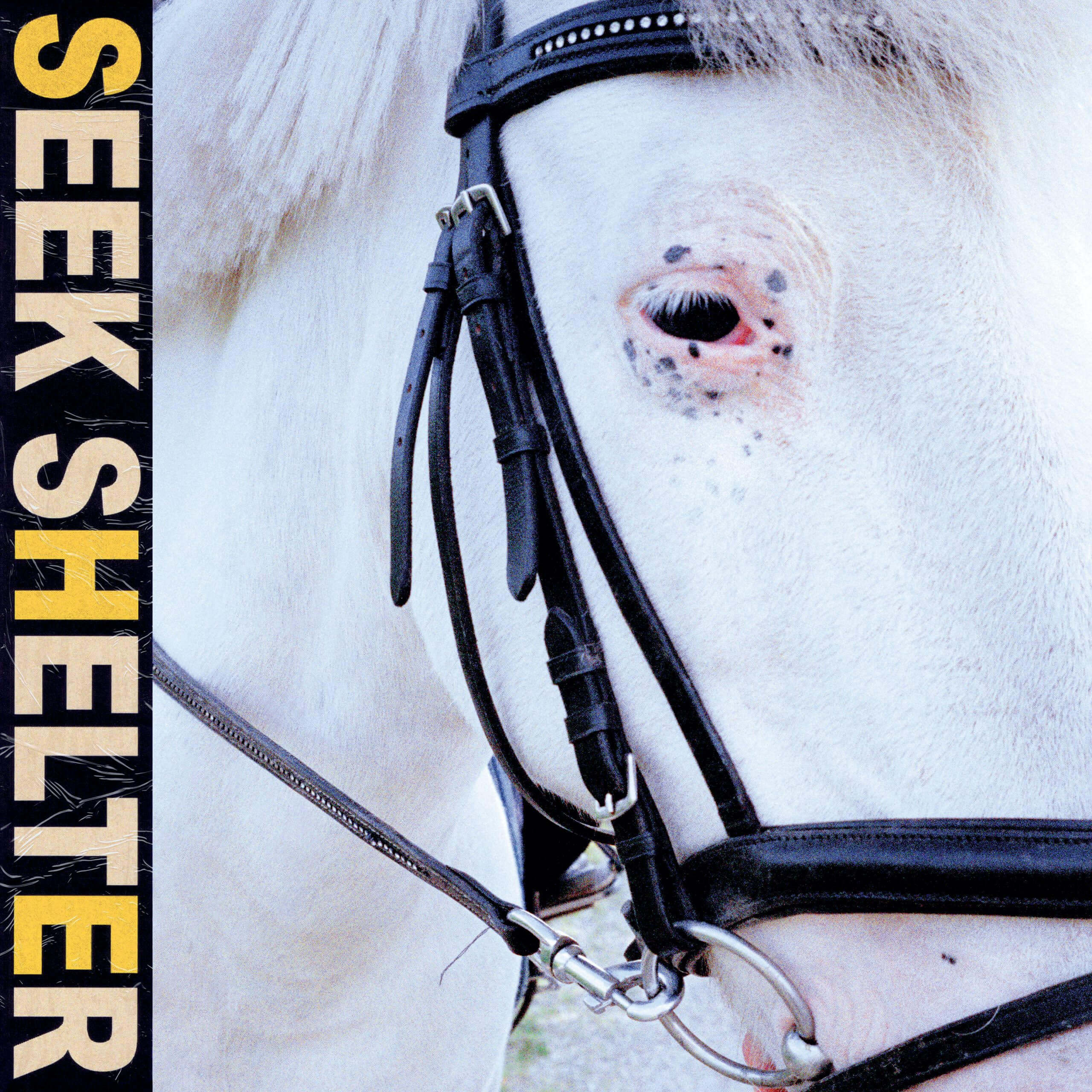 iceage seek shelter new album review cover artwork